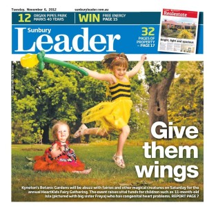 Leader Newspaper Fairy Day