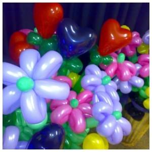 Twisty Balloon Flowers